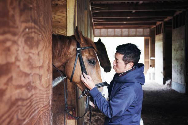 Séance d'équithérapie avec un cheval