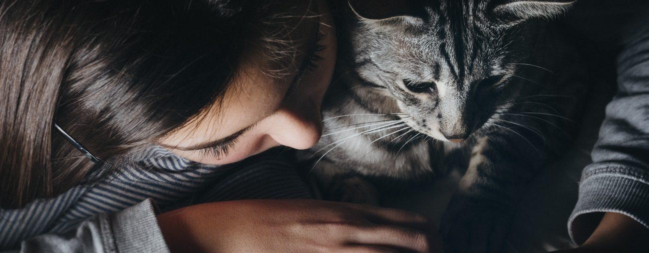 Zoom sur la zoothérapie : le bien-être par les animaux